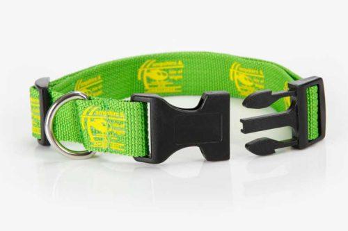 dog-collar-small-2