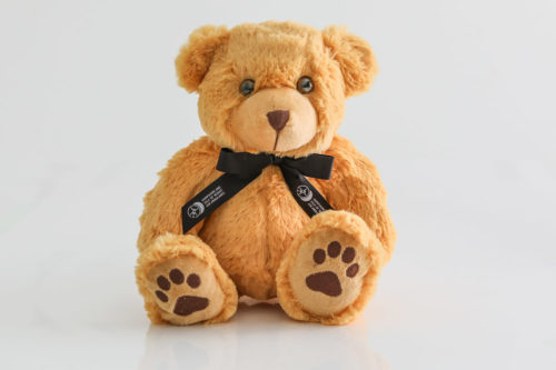 teddy 2 black ribbon