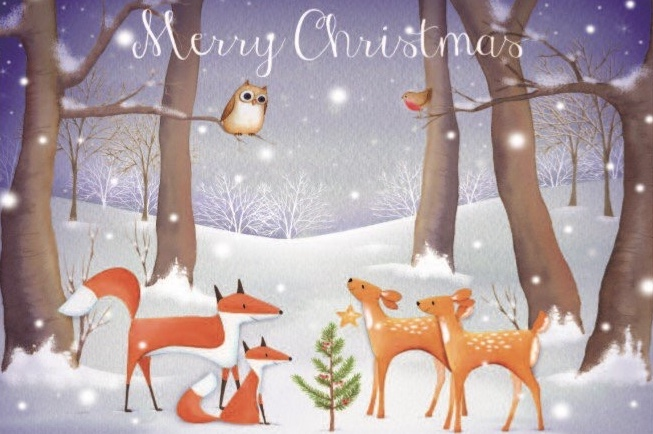 Woodland Scene Christmas Cards X10 Hshire And Isle Of Wight