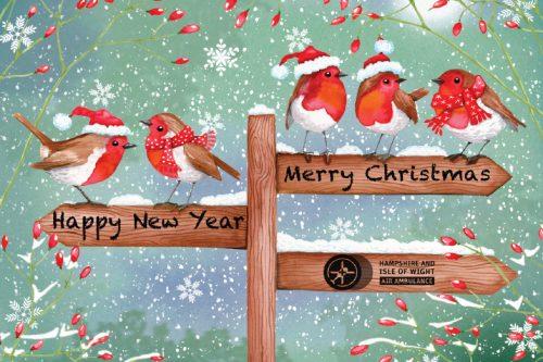 Christmas Card - Robins